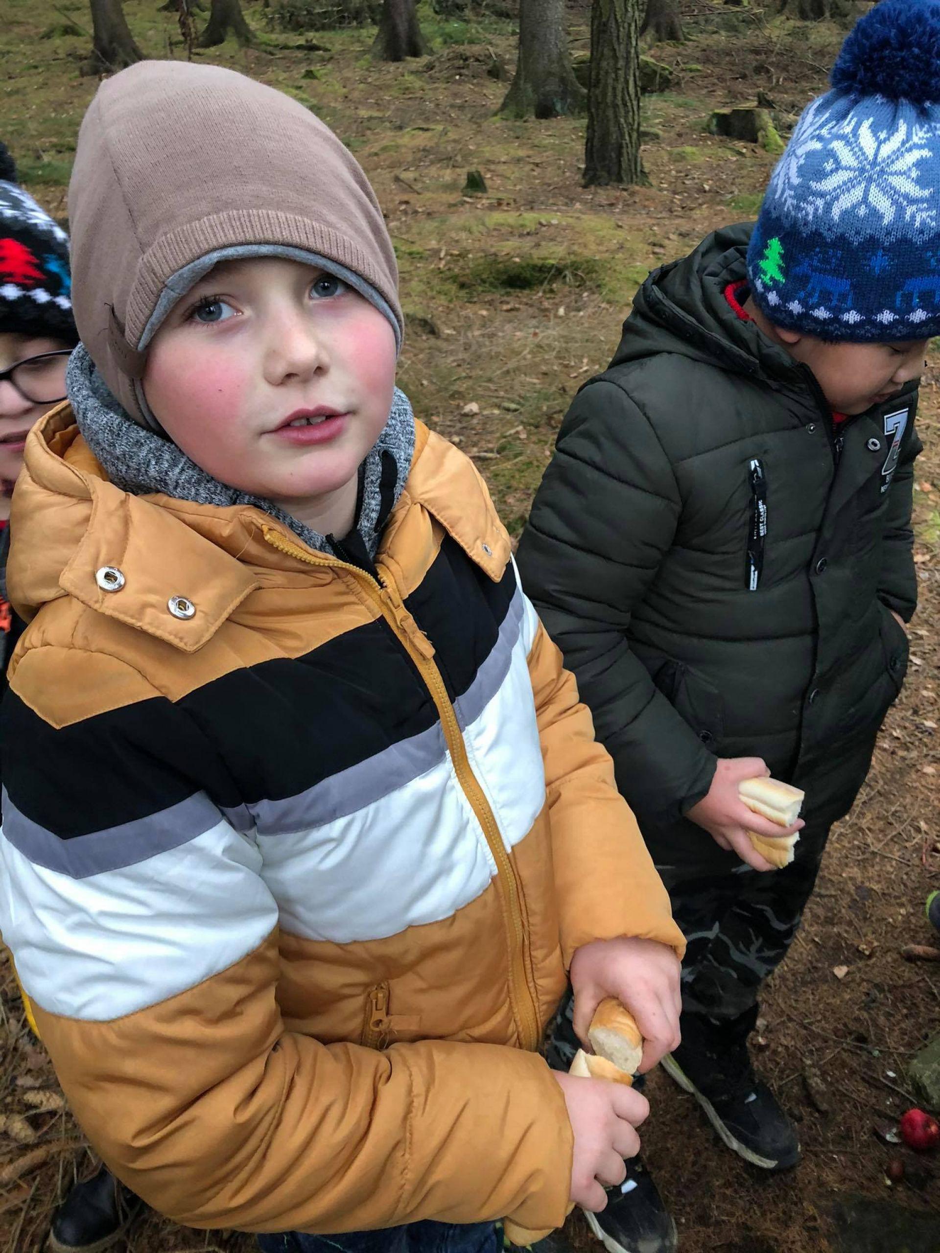 ŠD 2.třída - návštěva lesa